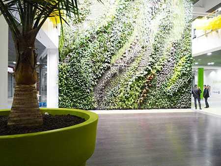 żywa ściana zieleni galeria przymorze gdańsk