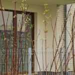 osiedle hiszpanskie nowe mieszkania mdm