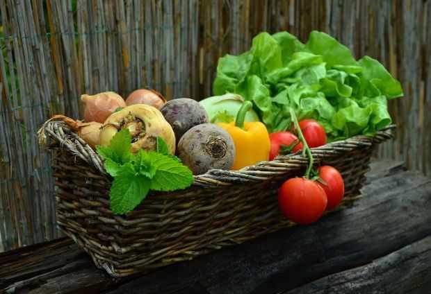 pakiety bio ekologiczne sklep online