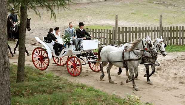 sala na wesele gdynia trojmiasto wejherowo