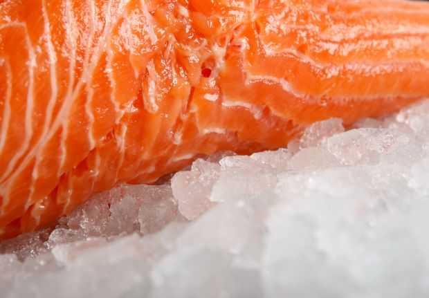 sprzedaż łososia w gdańsku