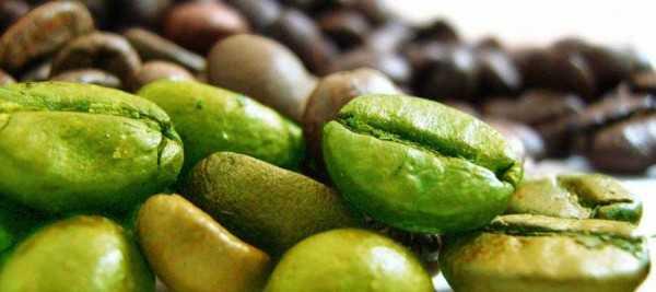 tabletki suplementy diety na odchudzanie (6)