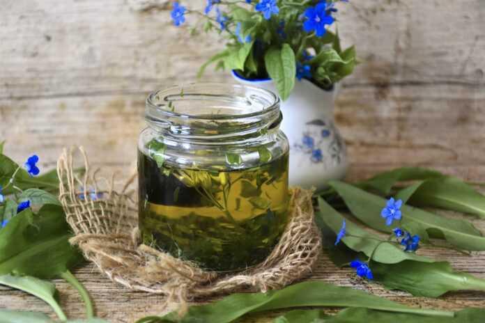 ziołowa apteka porady odporność