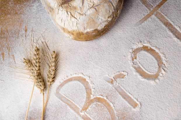 Chleb bio mąka chlebowa ekologiczna sklep internetowy