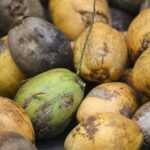 produkty kokosowe eco sklep bio tobio